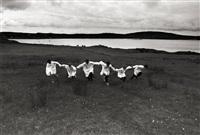 irish boys ii connemara, ireland for yamamoto by ferdinando scianna