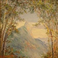 bergpanorama. blick auf hohe, bewaldete gipfel in der nähe von rio de janeiro (?) by luis maristany de trias