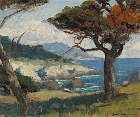 monterey cypress by arthur hill gilbert