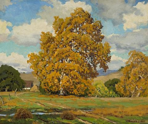 the sycamore in autumn monterey california by arthur hill gilbert