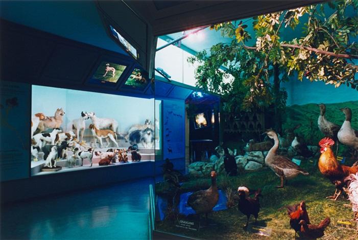 haus der natur salzburg by candida h fer on artnet. Black Bedroom Furniture Sets. Home Design Ideas