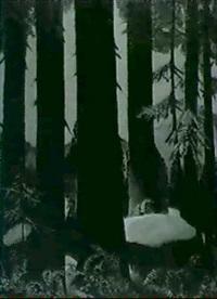redwoods by lucien a. labaudt