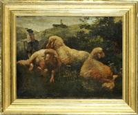 drei liegende schafe und hirte auf almwiese by johann baptist hofner