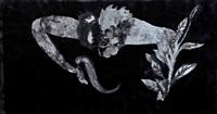 siyah kedili kompozisyon by sevinç altan