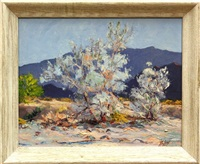 smoke trees, palm springs, california (double-sided) by james noland mcnary