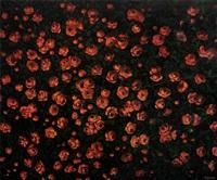 güller by ismail acar