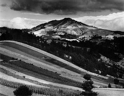 guatemala hillside by brett weston