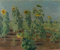 sonnenblumen im grossen moor by traugott senn