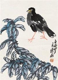 花鸟 by qi liangchi