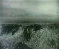 landscape by walter snelgrove