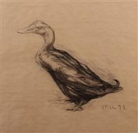 duck - ente by nicola hicks