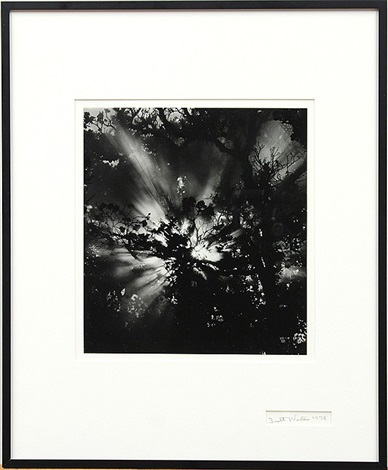 sunburst hawaii by brett weston