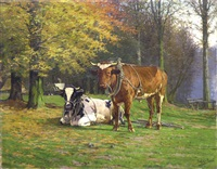 cows at rest by adolphe jacobs