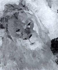 die dompteuse claire heliot mit einem lowen im nillschen  tiegarten, stuttgart 1907 by karl goll