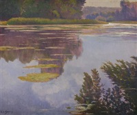 pond with waterlilies by laurent auberge de garcias