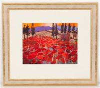poppies - toscana by james davis