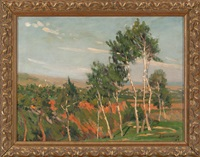 paisaje by ramon sanvisens
