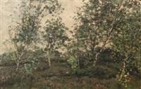 landscape with birches by jan adam zandleven