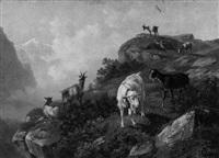 ziegen im hochgebirge (berner oberland?) by otto fischer