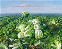 白菜地 (cabbage field) by xue zhiguo