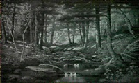woodland stream by alfred t. ordway