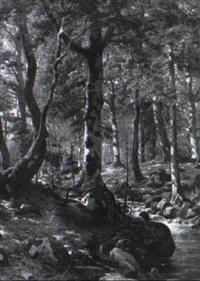 waldinneres mit bachlauf im bodenthal by r. fischer