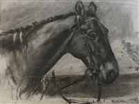 horse's head (study) by lucy elizabeth kemp-welch