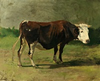 portrait einer kuh by hermann baisch