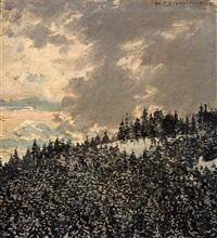 am rinken - feldberg by hermann dischler