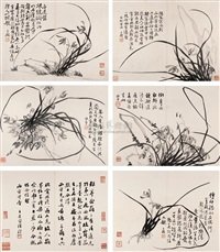 墨兰册 (orchids) (album w/8 works) by jiang yujian