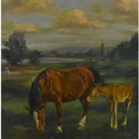 pferd mit fohlen by hans gartmeier