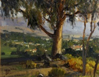 hilltop view, san luis obispo by brian blood