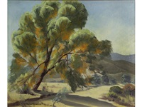 desert tree by sam hyde harris