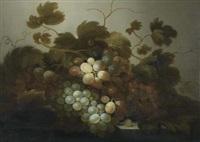 früchtestilleben mit trauben by roelof koets the elder