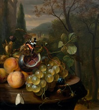 still life with apricots, grapes, a fig and a butterfly on a stone plinth by jan mortel