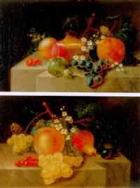 stilleben mit früchten, blumen und schmetterling by catharina treu