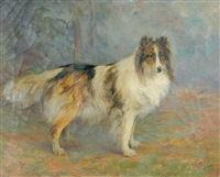 collie by c. l. van vredenburgh