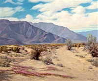 desert landscape (southern california) by axel linus