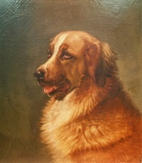 portrait of a saint bernard by john n. hess