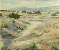 desert in bloom by james arthur merriam