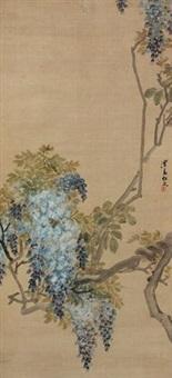 紫藤 (wisteria) by ren xiong