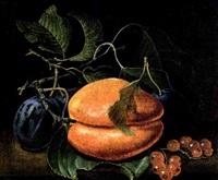 stilleben mit aprikose und zwetschgen by johann adalbert angermayer