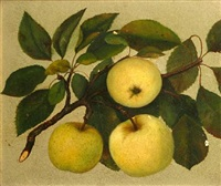 apples from rock hill farm by beda simpson