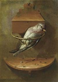 stilleben mit kleinem vogel by johann adalbert angermayer
