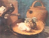 quattro volatili ed una giara in un interno by arcangelo resani