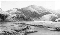 marin landscape by jack wisby