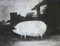 a prize pig in a yard by t.c. freeman