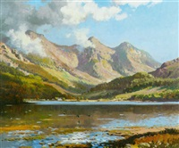 a view of loch duich with birds skimming the water in the foreground by wyndham lloyd