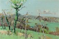 südfranzösische landschaft im vorfrühling by rudolf zender