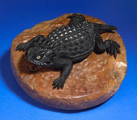 a horned lizard by lee downey